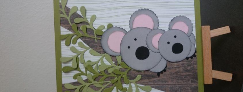 Punch Art-Koalas